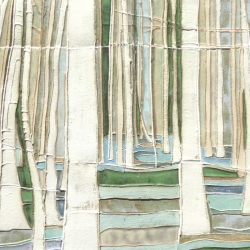 Silver Birch 36x147cm SOLD